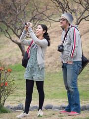I want to shoot you when you are shooting sakura (kasa51) Tags: people japan lumix couple photographer olympus panasonic f28 hanami omd em5 35100mm yokokama