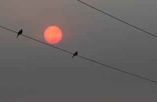 Smoky Saturday Sunset