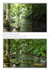 "How I created ""Bovey Valley Woods"" image (Ray. Hines) Tags: trees water photoshop woodland river framed photomatix riverbovey 3shothdr pentaxk5 boveyvalleywoods smcpentaxda18135mmf3556edalifdcwr"