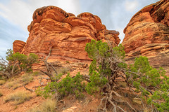 Rock Formations in the Needles District 2 (Kayla Stevenson) Tags: moab canyonlandsnationalpark utah usa
