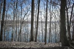 Christ Has Set Us Free (John 9:25 (Seeing With New Eyes)) Tags: johnninetwentyfive cumberland lake