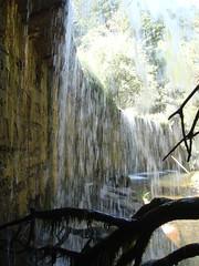 Como una lmina transparente .. (margabel2010) Tags: cascadas cascada presa presas ramas rama algas piedras cemento madera rbol solysombra blanco blancoynegro blancoyverde sierra guadarrama airelibre