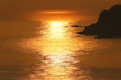 Reflections at beautiful morning (Teruhide Tomori) Tags: shore amarube morning japan sea sun light reflection       landscape ocean sunrise seaside
