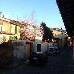 IMG_4654 (Rudy Letsche) Tags: italy italia sangiovannivaldarno renaissance florentine architecture city
