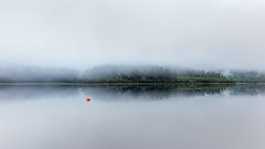 Signal (rgcxyz35) Tags: trees lochard trossachs mist reflections lochs fog nationalpark buoy scotland clouds