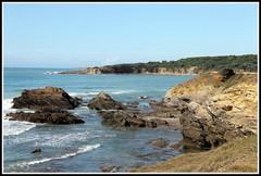 Corniche des Sables d'Olonne (Les photos de LN) Tags: corniche sablesdolonne vende ocanatlantique rochers paysage nature crique vagues cume littoral cte
