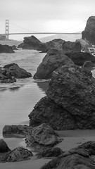 (1000 Words.) Tags: goldengatenationalrecreationarea landsend milerockbeach sanfrancisco goldengatebridge nature