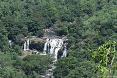 Breath Taking View of Thoovanam Falls, Chinnar Wildlife Sanctuary (Dinesh flicks) Tags: munnar munnarphotos munnarscenaries munnartouristspot devikulam topstation amaravathidam chinnarwildlifesanctuary thekkady dinesh photography kerala