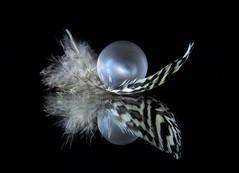 feather (guzmania*) Tags: macromondays inthemirror macro ball feather onblack reflection mirror