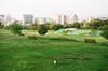 44860027 (_._13) Tags: 올림픽공원 토끼 rabbit film analogue 35mm minolta 필름 필름사진 미놀타