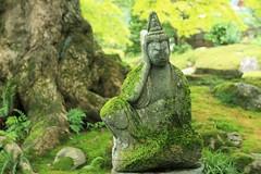 Stone Buddhist Image(covered in green moss) (seiji2012) Tags:      buddhistimage chichibu yokoze moss