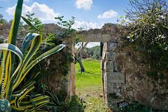 Il Giardino Segreto (Fabio Protopapa) Tags: paesaggio giardino segreto salento alimini otranto agave ulivi sky nature porta green