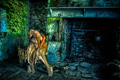 """All of My Pieces"" (Melissa June Daniels) Tags: melissajdaniels melissajunedaniels melissajdanielsphotography mjdphoto thenymphandthebee woman twisted dark selfportrait portrait ghost hdr stone abandoned haunted historic park springhouse colors color green blue pieces mindless haunting spirit perspective two double twin"