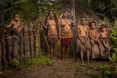 Dani's Women and Kids (tehhanlin) Tags: indonesia papua westpapua wamena irianjaya jayapura thedanis sukudani ikipalin noken koteka sony a7r2 a7rm2 ngc travel humaninterest portrait festival baliemvalley lembahbaliem