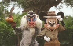 Mickey and Rafiki (LillieBuggy) Tags: disney mickey rafiki cute postcard
