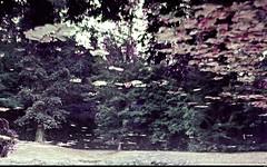 Jardin chateau, art (Sebmanstar) Tags: chteau limousin france french europe europa exterieur explore landscape travel castle tourisme pentax photography route richard coeur lion haute vienne campagne architecture pierre construction historique nexon medieval