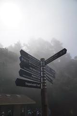 Mount Tamalpais: Rock Spring to Stinson Beach Hike (19) (Planet Q) Tags: mttam marinheadlands