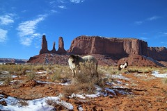 Navajo horses in front of Three Sisters (nuns) () Tags: monumentvalley navajotribalpark