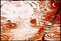 Niente Paura: Stai affogando (Angela Schlafmütze) Tags: winter wasser acqua inverno pioggia regen boden tempesta pavimento sturm flut diluvio ertrinken affogare chinonaffoganonsirialza galleggiareavitaèlamorte strömenregnen