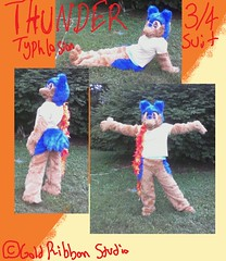 Thunder Suit (HanaKitty) Tags: blue brown furry pokemon thunder fursuit generation2 typhlosion
