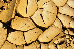 BARRO RACHADO -  (4) (ALEXANDRE SAMPAIO) Tags: sol gua linhas brasil arte natureza chuva mosaico contraste fractal beleza formas terra desenhos franca cor barro grfico experimento marrom exposio argila grafismo detalhes quebracabea composio acaso experimentao encaixe admirao sensvel fragilidade fotografiacolorida alexandresampaio barrorachado