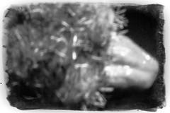 Pinhole with camera cap (Nicolas P. Tschopp) Tags: wild bw selfportrait strange tongue closeup contrast tooth mouth blackwhite insane close autoportrait emotion body head parts teeth flash extreme nuts cyprus lips biting pinhole freak ugly morbid jaws disgusting horror chewing cavity opening disturbing unusual organic senses sick bizarre abnormal foolish intimacy borderline concave proximity enamel digitalpinhole stronglight irrational unpleasant nicosia mentalillness egocentric kamakli