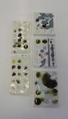 Glass fusing tests (Akvile Zukauskaite) Tags: akvile zukauskaite 1093799415