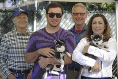 New Puppy Parents! (Alexandra Kimbrough) Tags: show dog toy miniature husky pentax huskies event kai klee alaskan ukc conformation akk