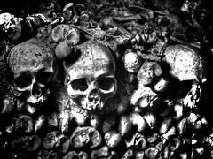Skull Central (aptsmith) Tags: blackandwhite bw white black paris france canon dark skull powershot spooky bone g11 aptsmith catacobs
