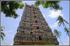 2839 - Thiruvathikai (chandrasekaran a 30 lakhs views Thanks to all) Tags: india architecture culture traditions lord temples hindu siva tamilnadu thirumurai thiruvathigai padalpetrasthalangal