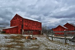 Taneytown, MD Barn (Forsaken Fotos) Tags: snow barn