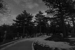 Snowy Path (ericsonjohnson) Tags: camping trees winter blackandwhite bw white snow black mountains night clouds forest canon stars landscape mt seasons sandiego trail observatory laguna sdsu