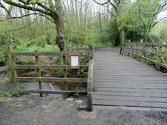 Pooh Sticks Bridge (Julie Fox 1) Tags: bridge england sussex jones sticks flickr brian hill east upper pooh winnie eastsussex ashdownforest poohcorner aamilne hartfield 100acrewood cotchfordfarm cotchford cotchfordhill