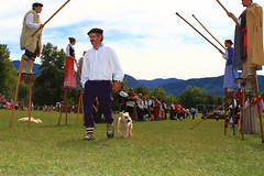 Concours de chiens bergers (www.pyrenees-bearnaises.com) Tags: traditions fte march fromage stands chants transhumance bergers danses machinesagricoles produitslocaux concoursdechiensdebergers pyrnesbarnaises ftedesbergers