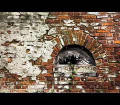 Plastic Fantastic (LiesBaas) Tags: house building brick home window canon belgium belgique belgie bricks belgië be thuis huis cracked raam gebouw gebroken stenen doel liesbaas plasticfantasticbyliesbaas