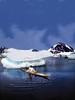 Grønland Inuit Søndrefjorden