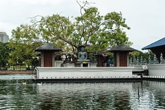 Sri Lanka (LrnCnP) Tags: travel white lake black colour water river temple shrine asia buddha buddhist religion sri lanka offering spiritual seema colombo malaka