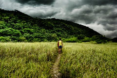 Wandering (Geomar Trio The Great) Tags: world life sky people storm mountains beautiful grass rain dark nikon philippines bicol tress hdr roaming d60 talahib calaguas bestcapturesaoi