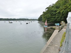 The Dittisham ferry terminal on the River Dart at Greenway, Devon (DEE VEE 40) Tags: riverscene