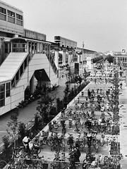 monorail bicycles (gracejonathan) Tags: argusc3 monorail station bicycle film fujineopanacros100