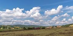 1856_2016_07_09_Haunetal_Neukirchen_DB_185_179_mit_Hilfszug_&_TRFSA_Hbbikks_auf_Hilfsdrehgestell_Bad_Hersfeld (ruhrpott.sprinter) Tags: ruhrpott sprinter geutschland germany nrw ruhrgebiet gelsenkirchen lokomotive locomotives eisenbahn railroad zug train rail reisezug passenger gter cargo freight fret diesel ellok hessen haunetal neukirchen db cancantus egp eloc metrans rhc sbbc txlogistik wiebe stopfexpress 139 185 193 411 415 428 ice r5 hilfszug trecker heuwender kornfeld weizen cocoon alien outdoor logo natur blumen tiere rinder schmetterlinge graffiti