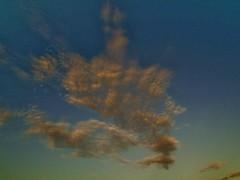 A patch of dark Cirrocumulus (Richard Bougeard) Tags: jersey weather