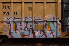 LEARN (TheGraffitiHunters) Tags: graffiti graff spray paint street art colorful freight train tracks benching benched learn yme circle t boxcar