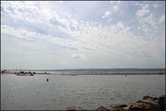 West Kirby Wirral 230816 (3) (Liz Callan) Tags: westkirby wirral sea seaside beach rocks boats ben bordercollie dogs sky water waves buildings lizcallan lizcallanphotography