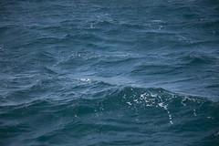 Agua oscura y agitada del tlntico. (www.rojoverdeyazul.es) Tags: fuerteventura islas canarias canary islands espaa spain autor lvaro bueno isladelobos island agua olas mar atlntico water waves sea atlantic
