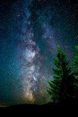 Milky way (Milos Golubovic) Tags: night astrophotography milkyway stars scorpius constellation sky pinetrees srbija serbia novavaros zlatar nikon sigma d7100 astro alone cold zlatibor uvac