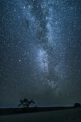 Namib Mikly-Way (lostin4tune - Thank's for a million views!) Tags: starstars sky nightsky milkyway galaxy astro astrophotography astronomy namib namibian nightshot long longexposure celeste celestial backlight deepsky canon 1dc canon1dc canonphotography
