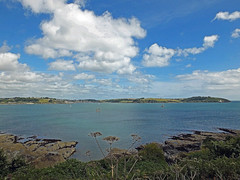 The Fal Estuary (Cornishcarolin. Rest in Peace Mum xxx) Tags: cornwall falmouth nature theriverfalestuary estuaries