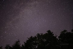 Wishing Upon a Star (**PhotoSchmoto**) Tags: astrophotography milkyway shootingstar star stars galaxy night photography headlands darksky michigan pure puremichigan nature longexposure