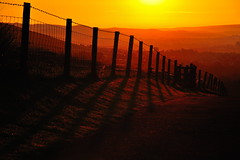 Shadows of dawn (images@twiston) Tags: shadowsofdawn fencedin fence wood lane regular pattern morning wheatheadlane blacko roughlee field fields grass farm farmland moorland moor lancashire landscape september dawn track path yellow golden silhouette silhouettes silhouetted shadow shadows sheep wire barbed post posts dof depthoffield rural countryside sunrise valley summer gold orange sunlight sunshine hff imagestwiston friday happy